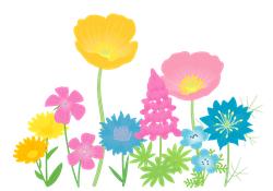 教育現場の春(花)